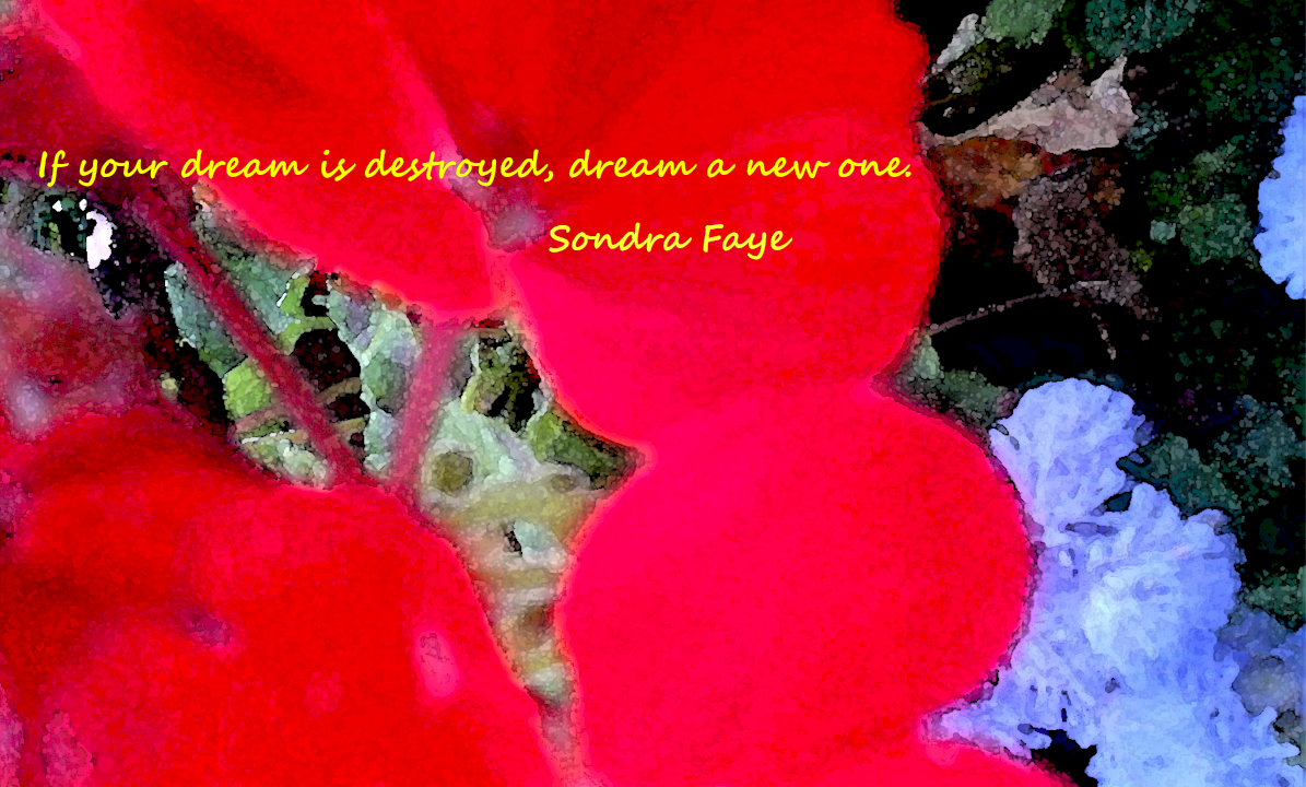 dream-new-one